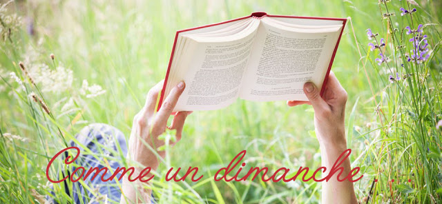 summer-reads-header