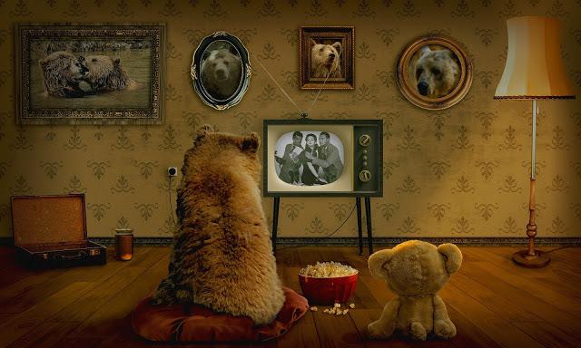 bear-3145874_1920-1